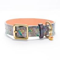 Charmed-Life Python Dog Collar (1 inch) RareBreed