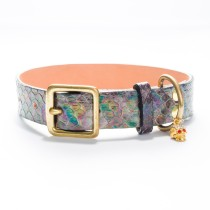 Charmed-Life Python Dog Collar (1 inch) RareBreed