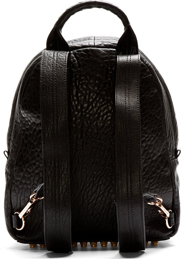 Alexander Wang Backpack Back