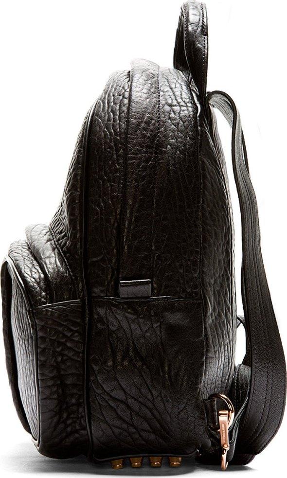 Alexander Wang Backpack Side