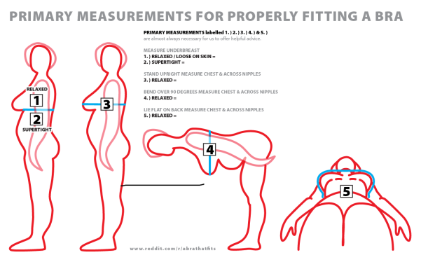 Bra Measuring