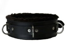 Collar fur Lined locked