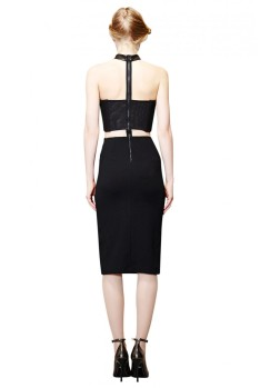 alice_and_olivia_EVYLEATHERCHOKERBUSTIERDRESS_black_2.jpg