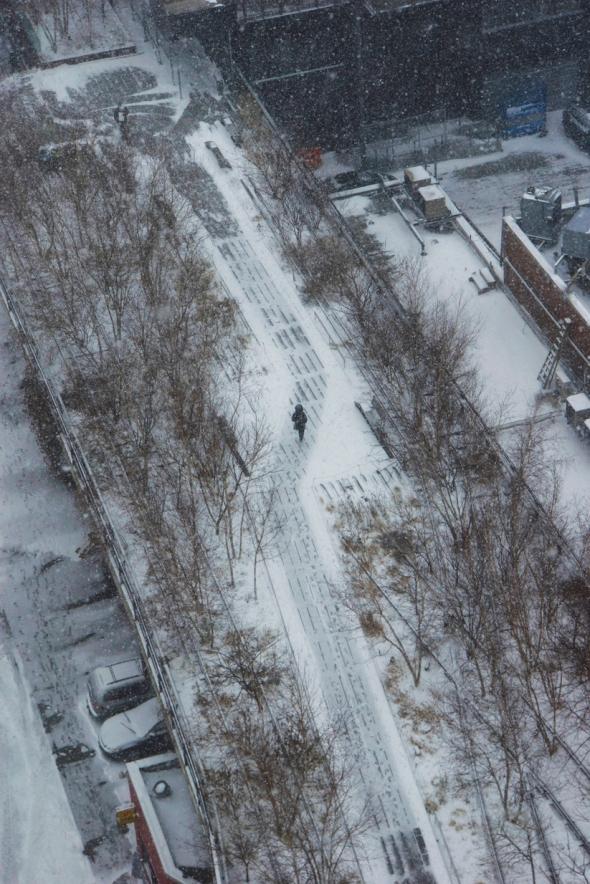 Frozen High Line Annik La Forge Jan. 2014