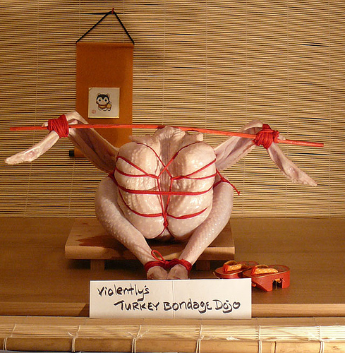 shibari thanksgivingturkey