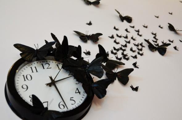 time_flies35.