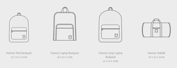 Pantone-Bag-Size