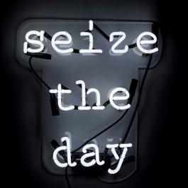 Oliver-Gal-Seize-the-Day-Neon-Sign-6e273e18-a709-4f1b-b344-ff3e88fda84c_600