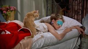 Cat dragged in...Audrey Hepburn
