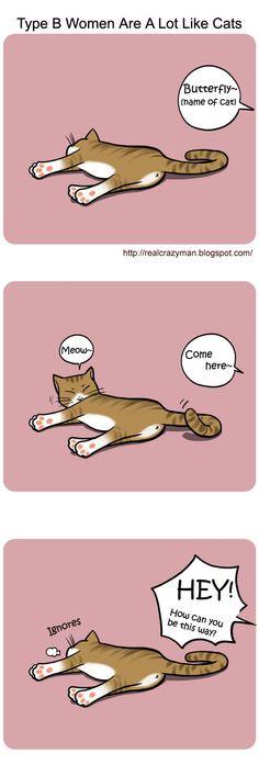 Blood type B women cat