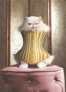 cat-in-corset