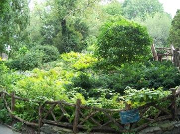 2007-08-28_shakespeare's garden central park
