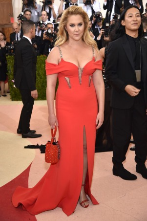 Amy-Schumer-Met-Gala-2016-Red-Carpet-Fashion-Alexander-Wang-Tom-Lorenzo-Site-5 bike