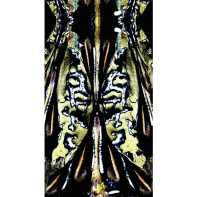 Cassandra Hone Beetle shell and oil green large scarf