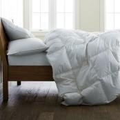 Company Store organic_white_down comforter