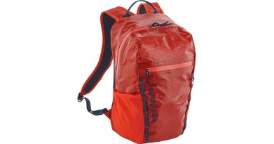 Patagonia 26L Black Hole Paintbrush