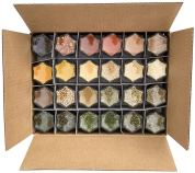 Gneiss Spice Everything Set 24 box